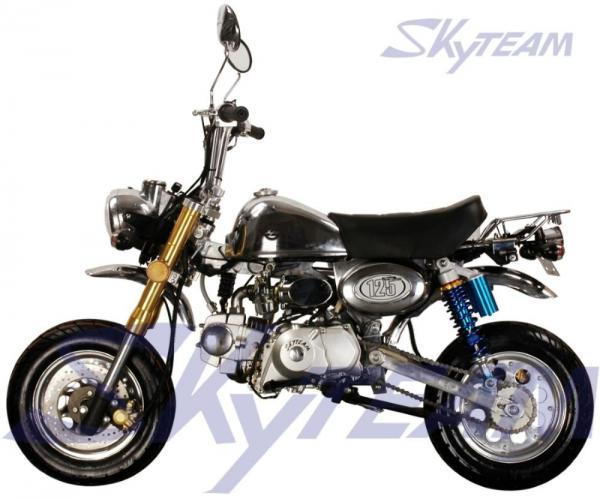 wrg 3124 skyteam 125cc dirt bike wiring diagram rh 76 e petitioner org uk